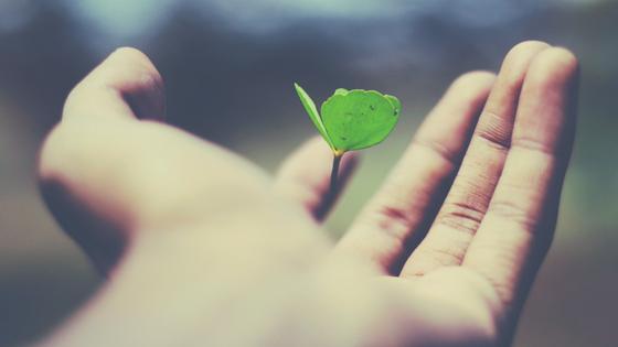 La Terapia Gestalt es una forma de Psicoterapia de enfoque Humanista. En las sesiones que ofrezco en Ibiza, podrás conocerte mejor y mejorar tu autoestima y relacionarte de forma más sana contigo y los demás.